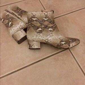 ZARA faux snake skin bootie 🖤